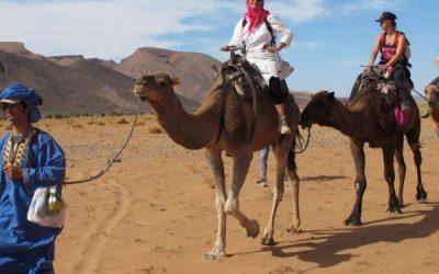 Maroc OrganisationMerzouga
