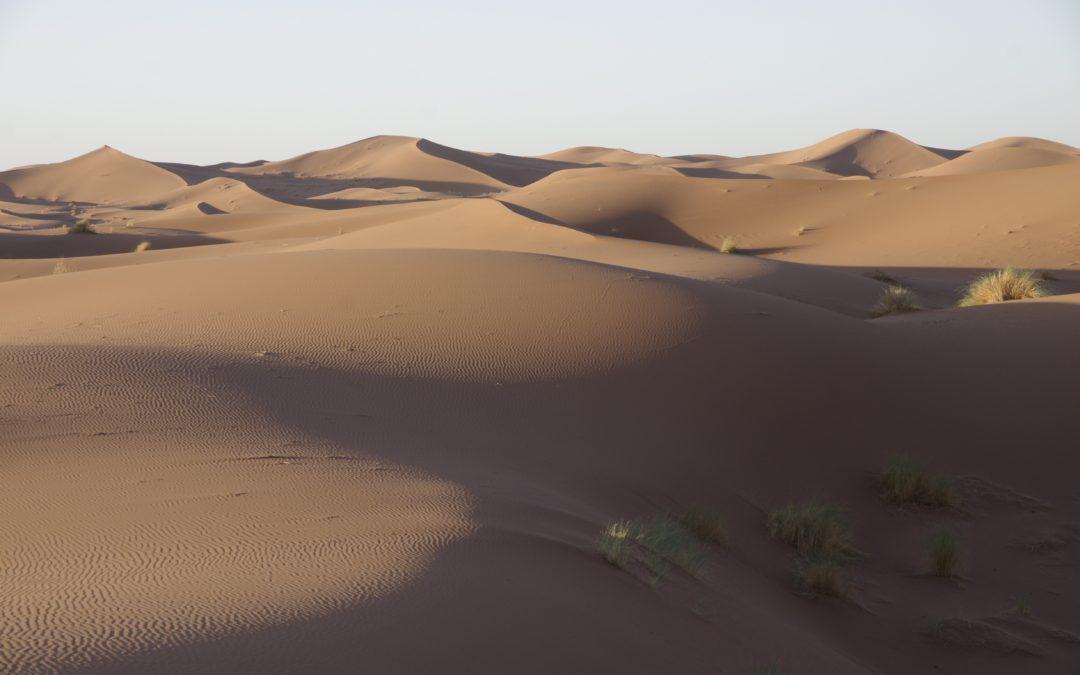 bivouac dans les dunesChegaga
